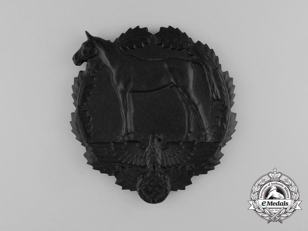 An SA Equestrian Youth Meritorious Service Prize Plaque