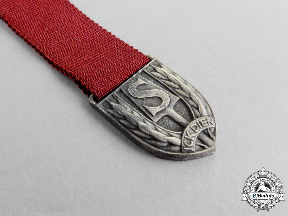 A Miniature Dutch RAD Medal