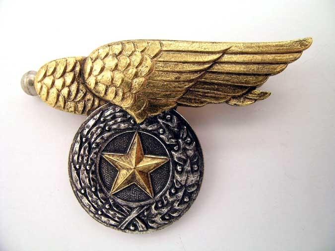 PILOT'S BADGE – VIETNAM ERA