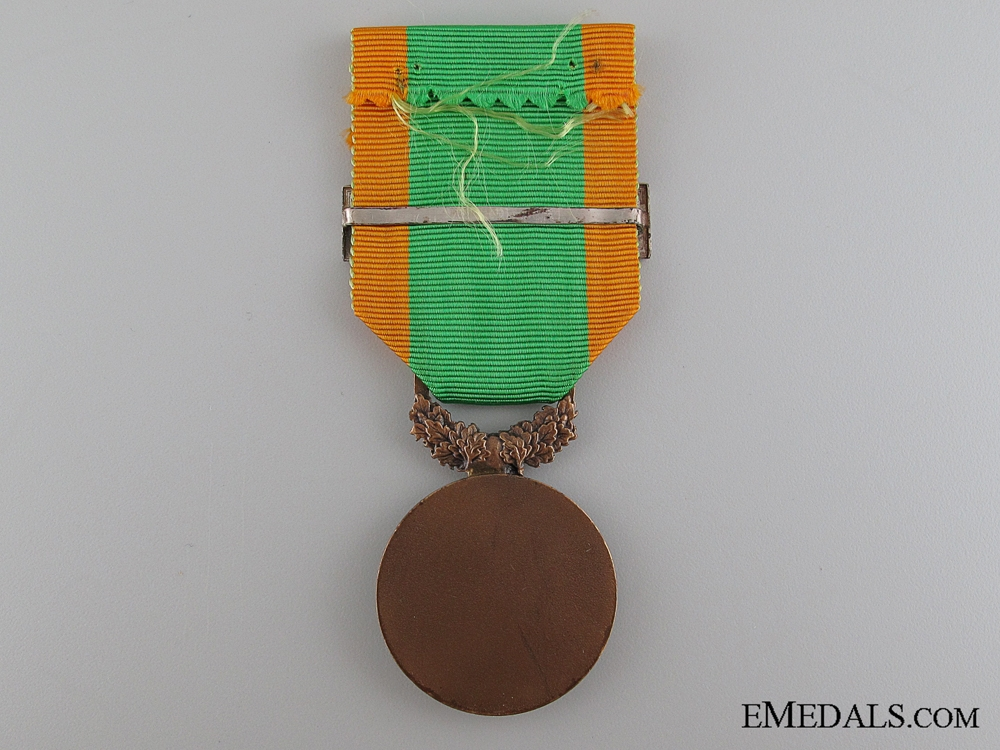 French Medal for Volunteers