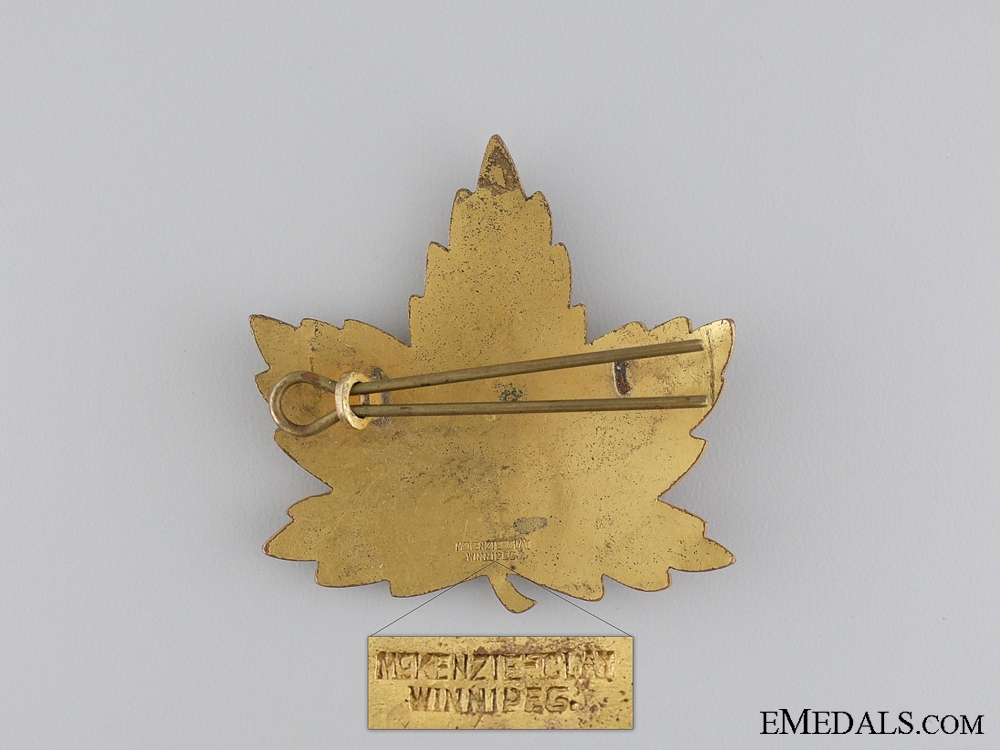 A Second War Elementary Flying School Cap Badge