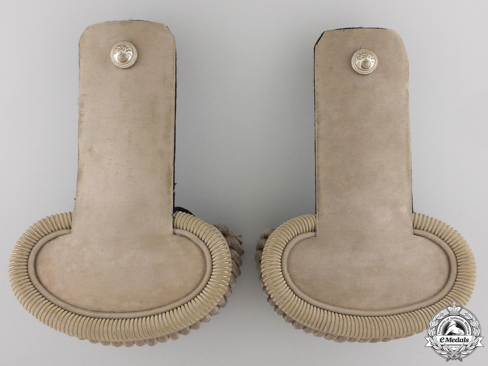 19th Century French Artillery Officer's Epaulette Pair with Case