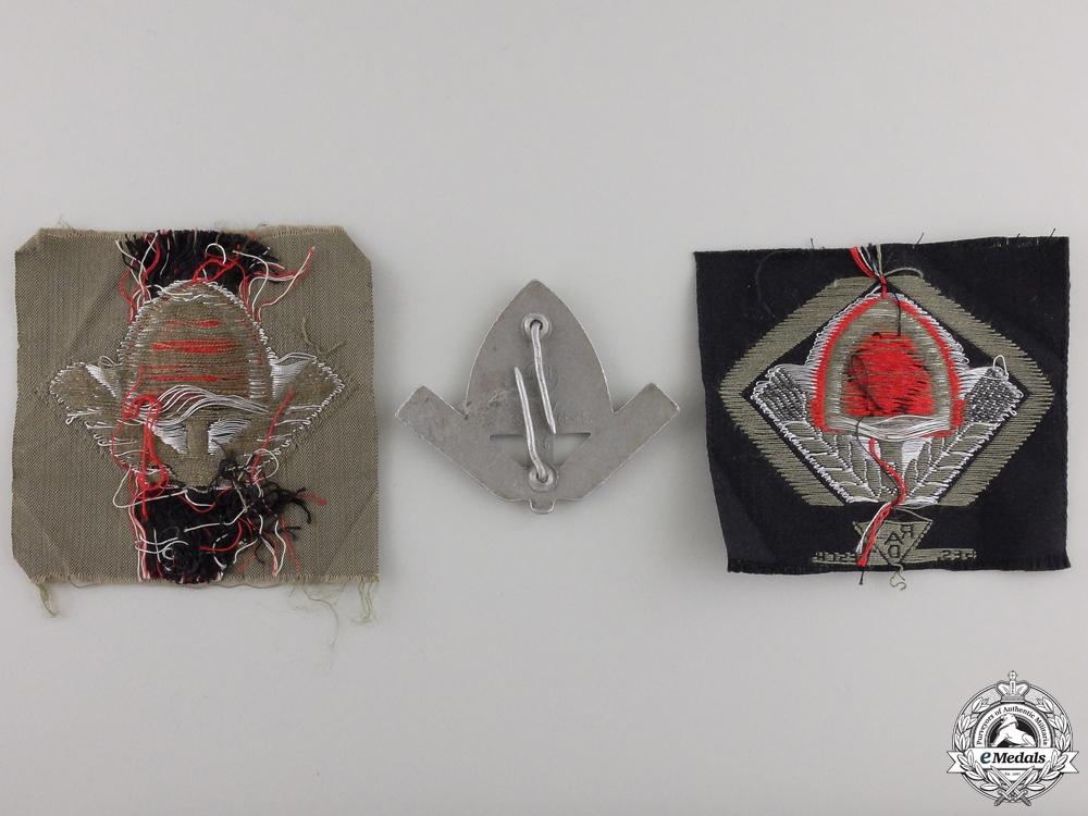 Three Items of RAD Insignia