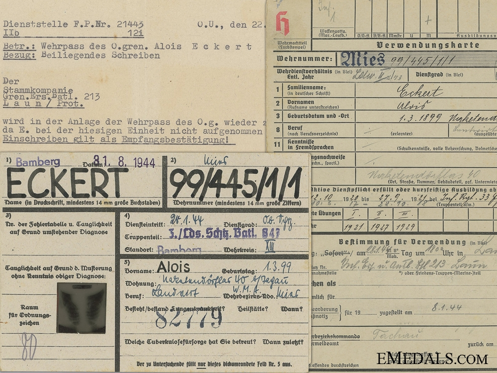 A Wehrmacht Wehrpass & Army Medical Records to Czechoslovakian