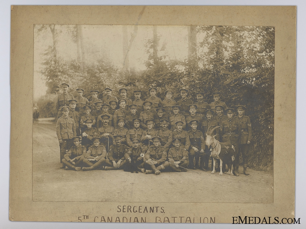 A Great War Veteran's Group to the Western Canadian Cavalry