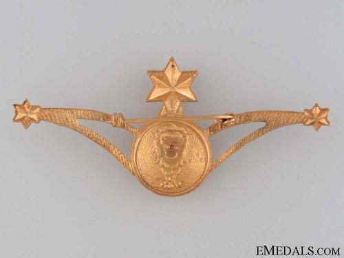 Ethiopian Air Force Navigator's Wings Badge