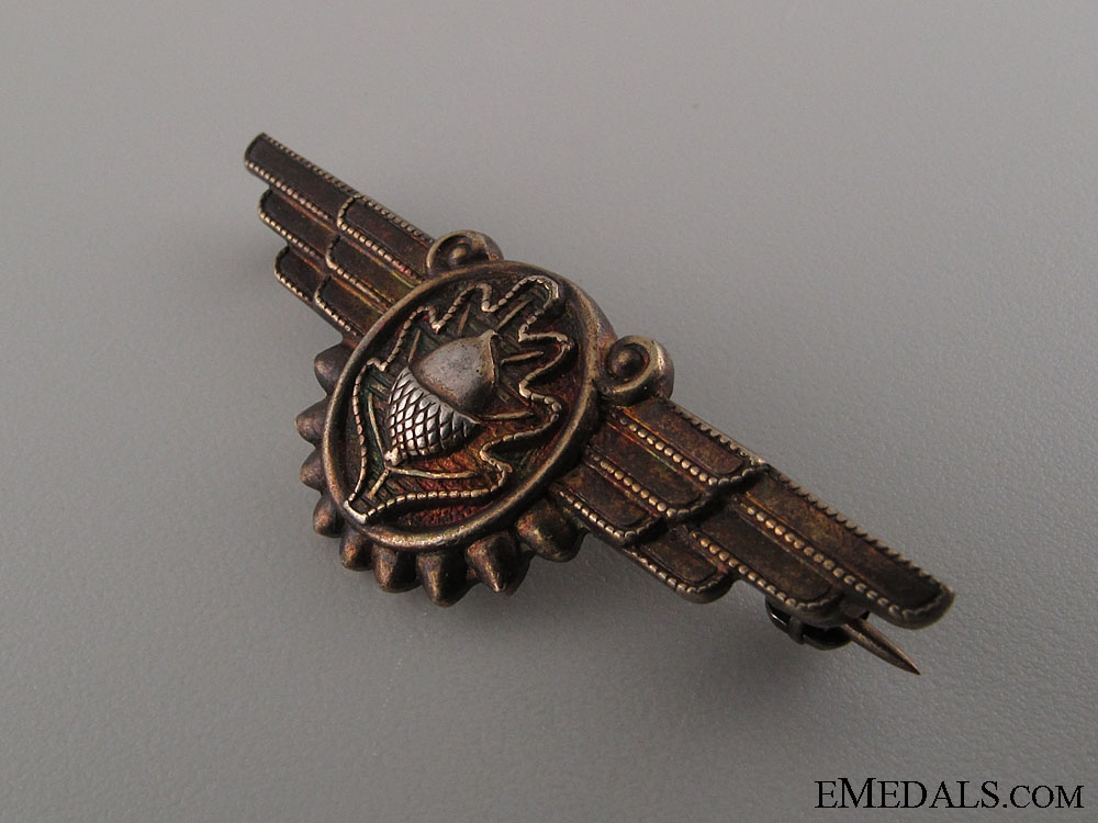 An Early WWII Naval Flight Surgeon Badge