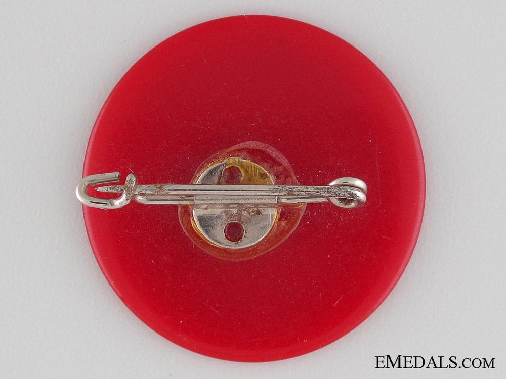 1938 NSDAP Celle Badge