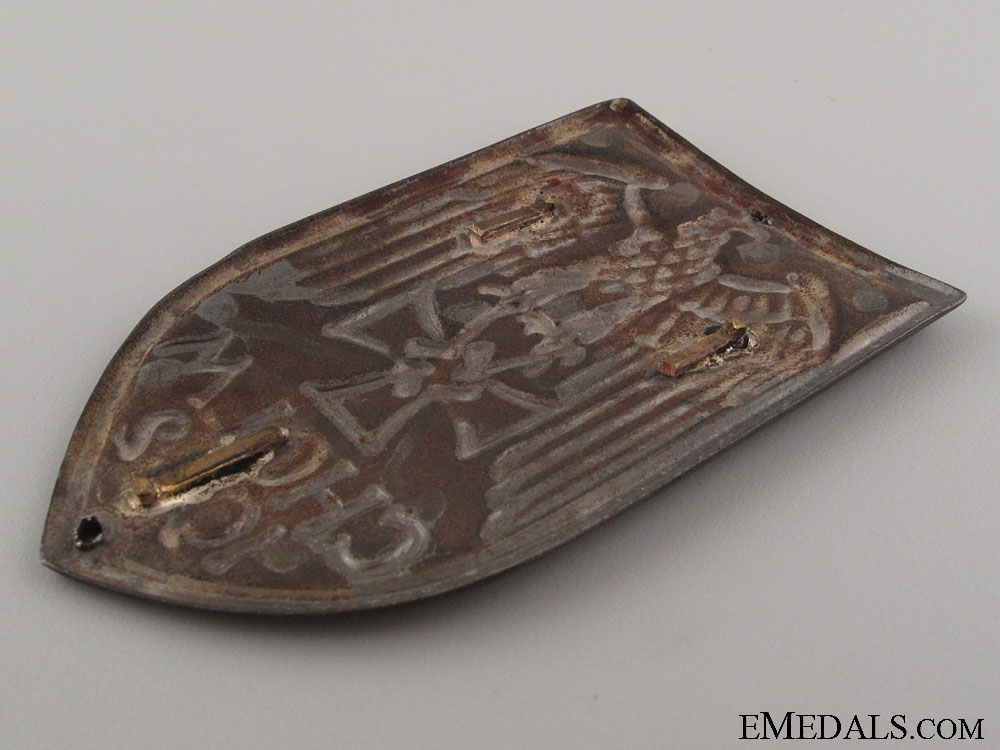 A Scarce Cholm Shield