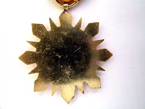 SYRIA, VICTORY CAMPAIGN STAR (1945)