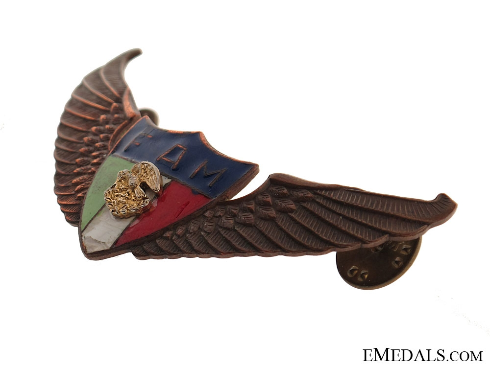 Pre WW2 Old Mexican Pilot wing