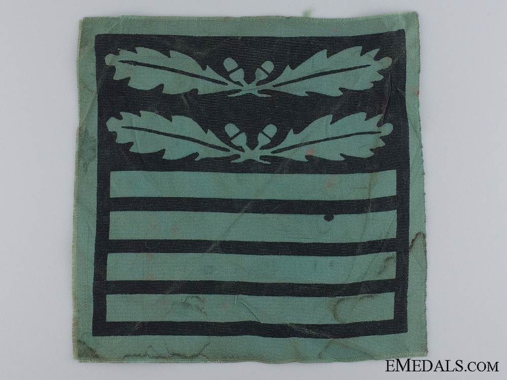 Waffen-SS Insignia for Camouflage Uniform for an Oberführer