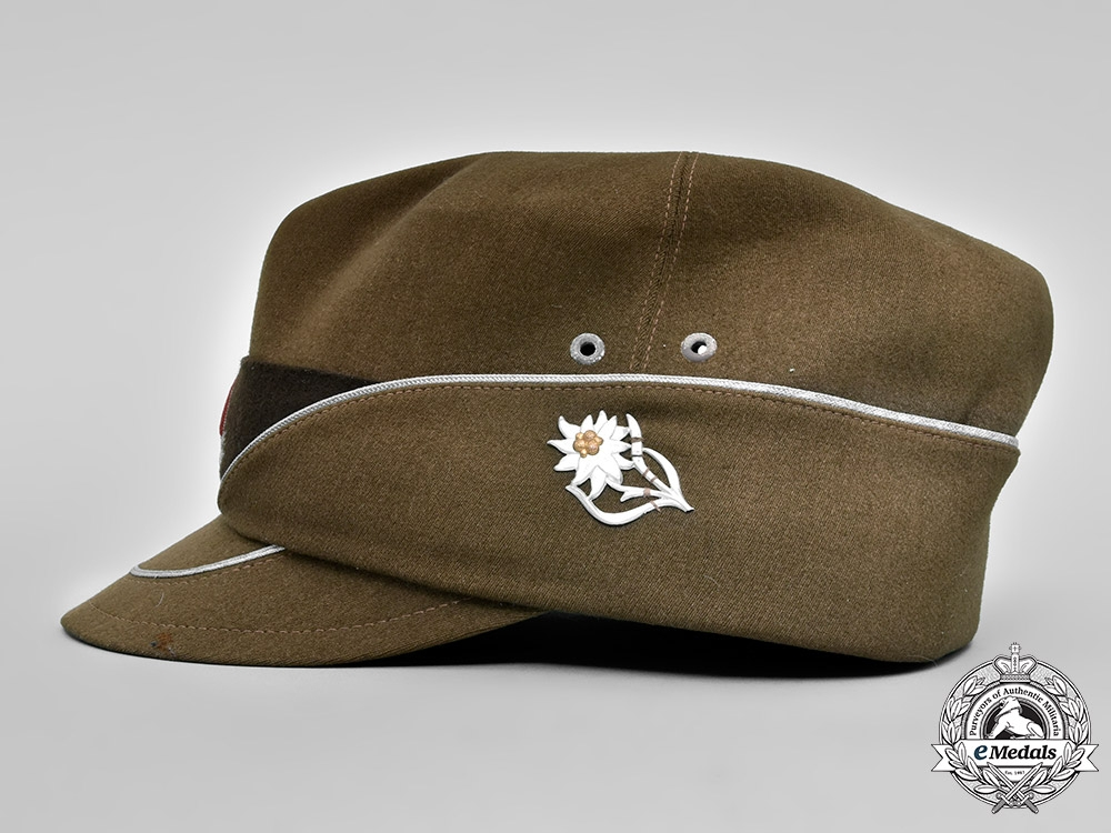 Germany, RAD. A Reich Labour Service Officer's Cap, Austrian Issue