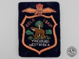 A Royal Air Force (RAF) Gold Coast Veteran's Blazer Patch