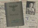 A Luftwaffe Wehrpass to Spotlight Battery & Denmark Service