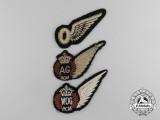 Three Royal Canadian Air Force (RCAF) Wings