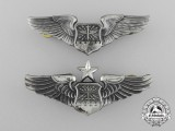 Two American Navigator/Combat Systems Officer/Observer Wings