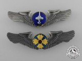 Two Japanese Air Self-Defense Force Badges