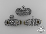 Three American Air Force Career Group Badges
