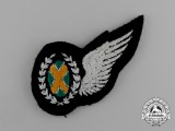 An Unknown South African Air Badge
